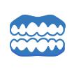 義歯を作りたい (入れ歯外来)